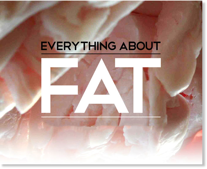 Everything About Fat