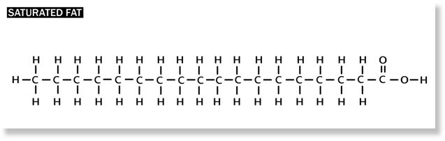 Molecular structure of Stearic Acid, a saturated fat